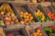 biosecurity programme protect livelihood sps quarantine pacific island response fruitfly