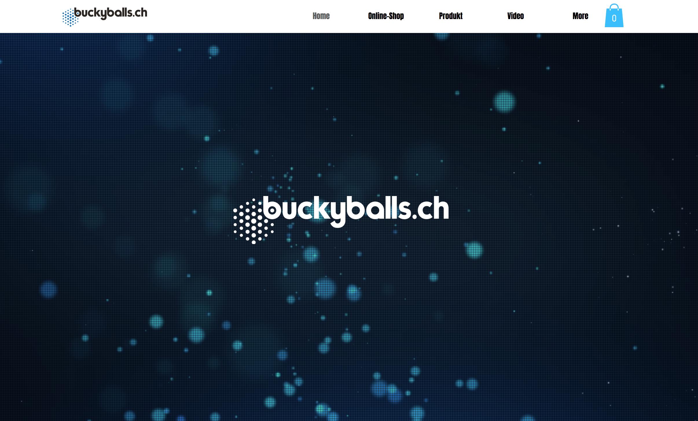buckyballs.ch
