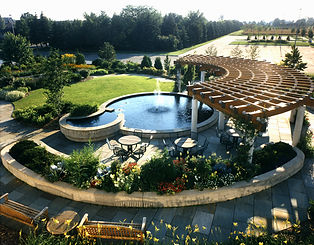 Garden pond.jpg