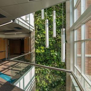 Delta College Health Sciences Wing