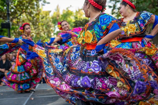 Cultural dance performance