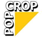 popcrop.jpg