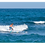 Thumbnail: Aztron Titan Stand Up Paddle Board SUP 11.11  iSUP inkl. Paddel