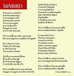 01 Sunbird