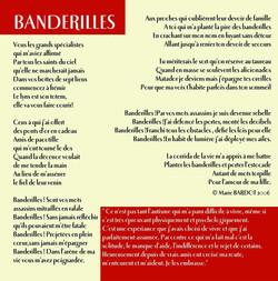 08 Banderilles