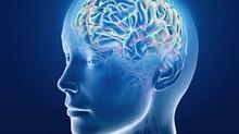 """Des scientifiques pourraient """"reconnecter"""" un cerveau autiste grâce à une manipulation gén"""