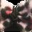 Thumbnail: Kit Luxo Oncinha