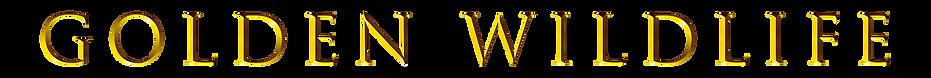 golden wildlife font.png