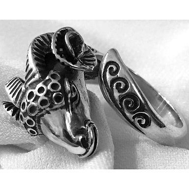 ram head ring