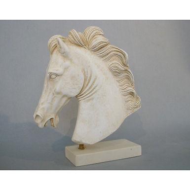 elegant horsehead