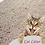 Thumbnail: Cat Litter