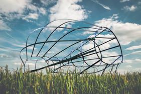 sculpture in a cornfield.jpg