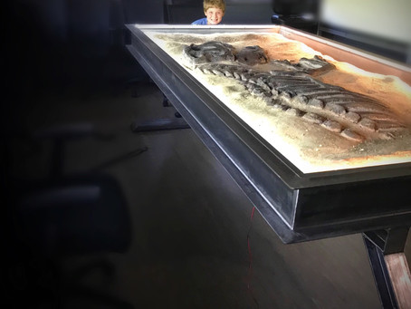 Custom Conference Table With Showcase