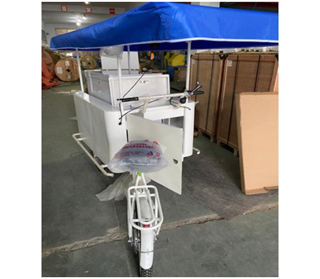 Tricycle with Solar Freezer