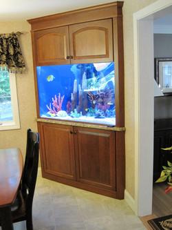 Custom Fish Tank Enclosure