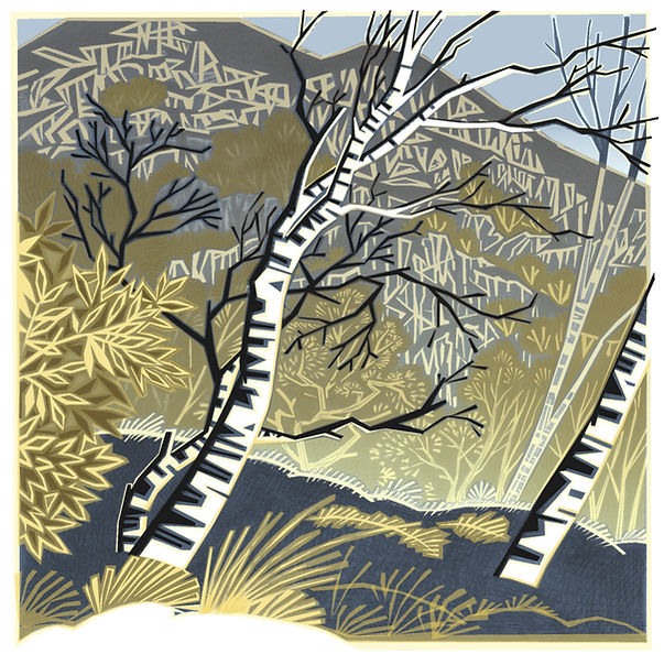 birches - original image by jenny tylden-wright