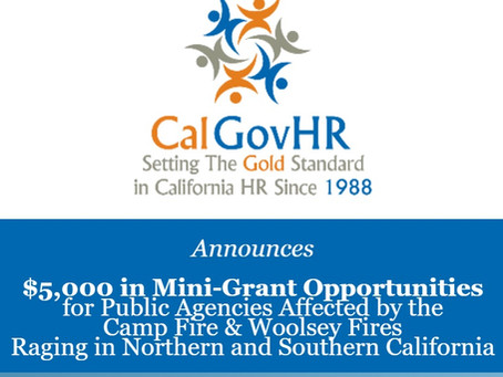 $5,000 in Immediate Mini-Grant Opportunities for Public Agencies Affected by the California Fires
