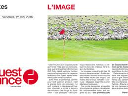 OUEST FRANCE //
