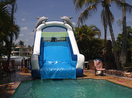 PRP-WJ04 dolphin_slide_inside_pool4.jpg
