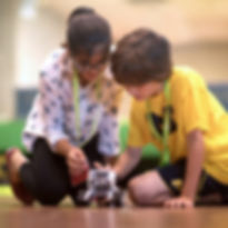 activitati copii