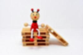 Pallets | ladybug | www.firstchoicepallets.org