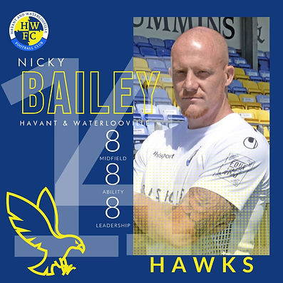 Citrus Monkeys - HAWKS - Nick Bailey.jpg