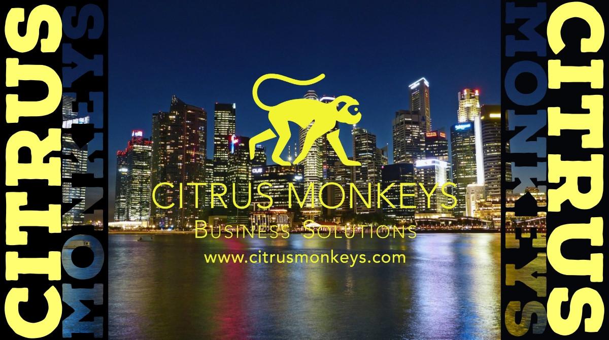 Citrus Monkeys Business Solutions