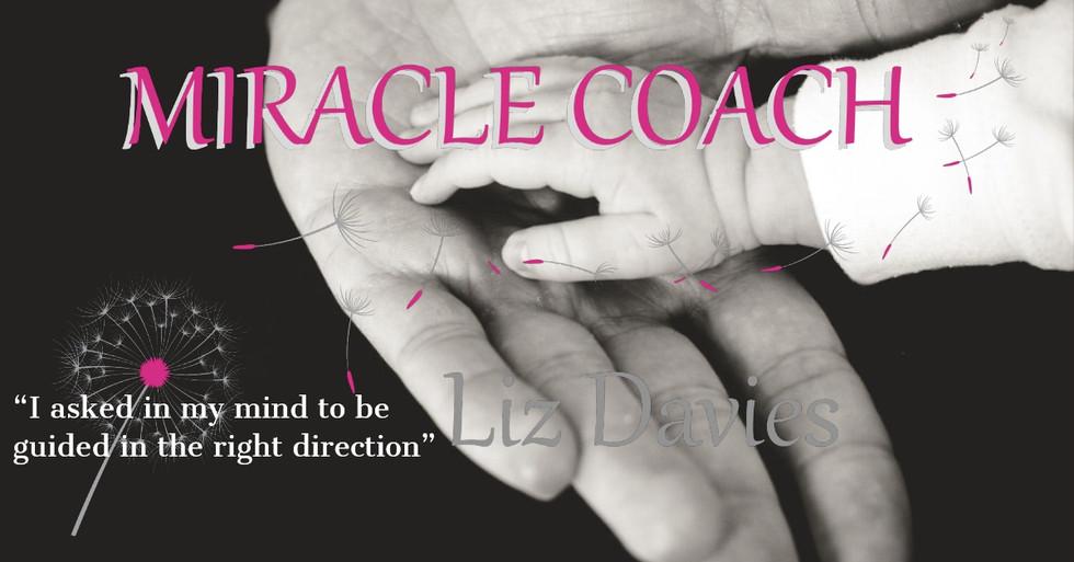 Citrus Monkeys - Miracle Coach Direction