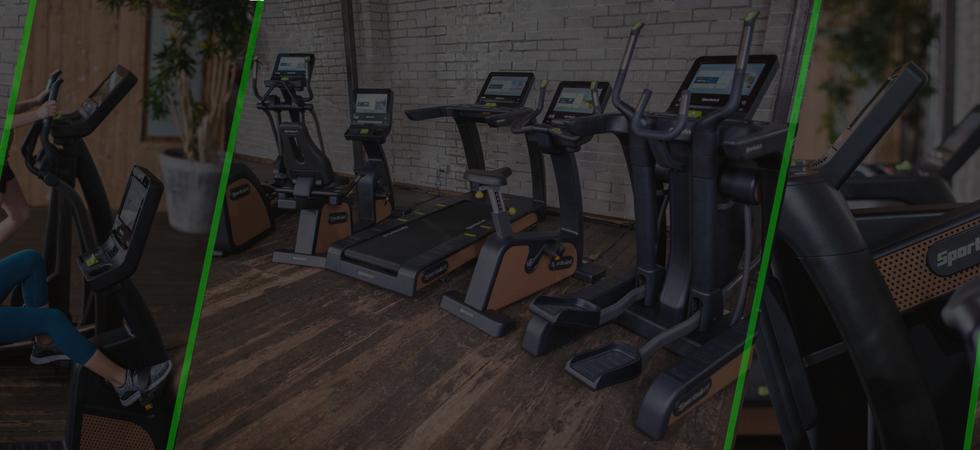 SA Green Fitness _ Sports Art _ SA WELL+ Software