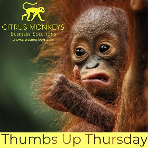 Citrus Monkeys Thumbs Up Thursday.png