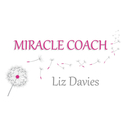 Citrus Monkeys - Miracle Coach
