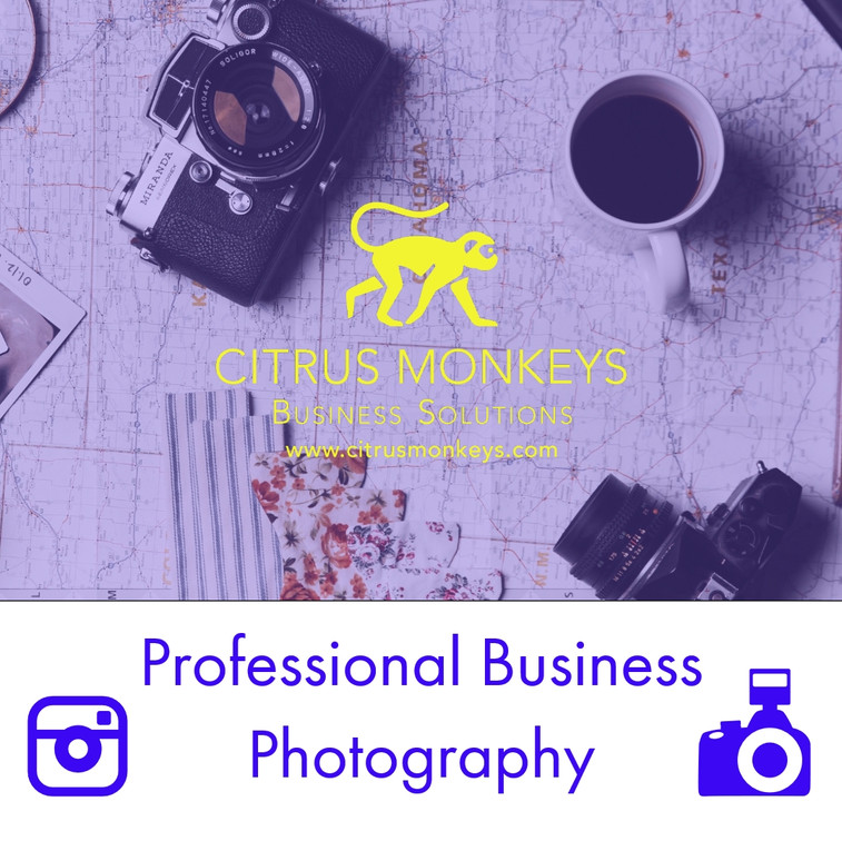Citrus Monkeys Business Photography