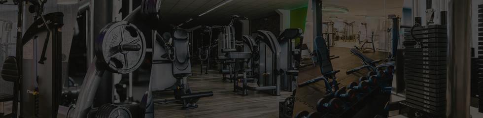 SA Green Fitness  _ Sports Art _ Strengt