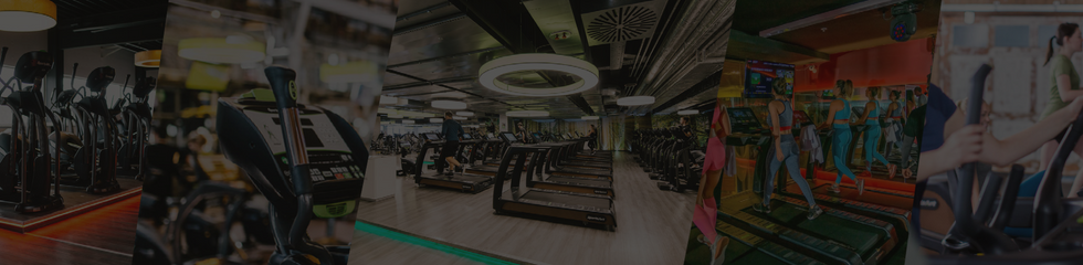 SA Green Fitness  _ Sports Art _ Custome