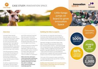 Little Kanga case study