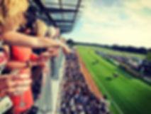 Fontwell Park Racing & Events