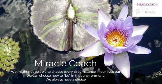 Miracle Coach - Choice