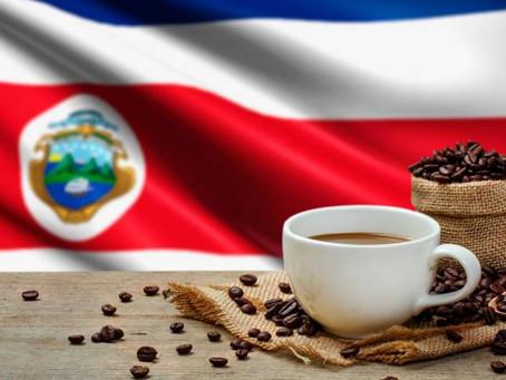 Situación de la caficultura en Costa Rica.