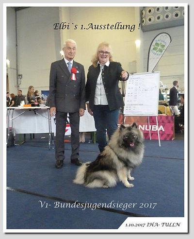 Tulln-IHA--Elbi-Bundesjugen.jpg