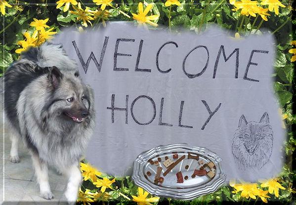 HollyundNanuk-4.jpg