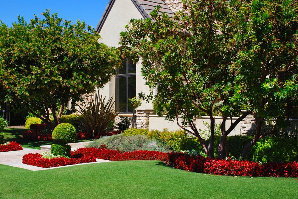 House Landscape Design | As4less