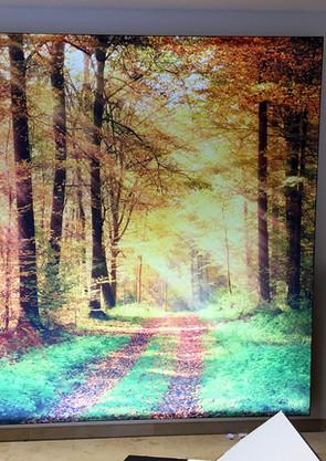 Leuchtbilder (8).JPG