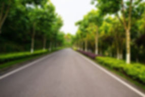 beautiful-road-is-surrounded-by-greenery