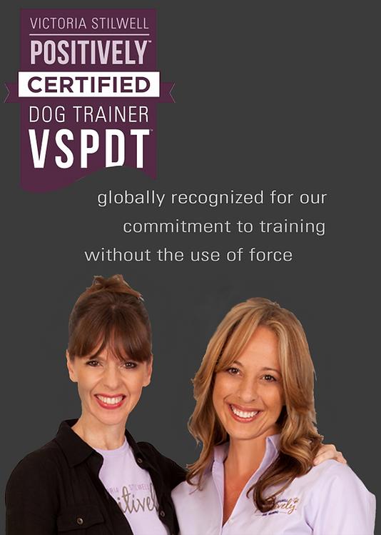 VSPDT Member.png