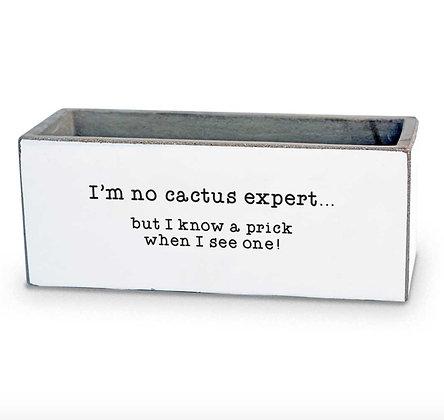 I'm No Cactus Expert Succulent Pot