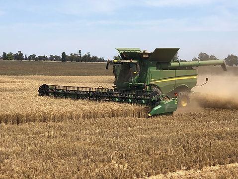 harvesting-Header.jpeg