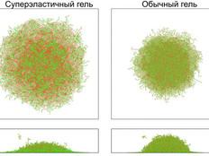 Темы курсовых и дипломных работ: Суперэластичные полимерные гели