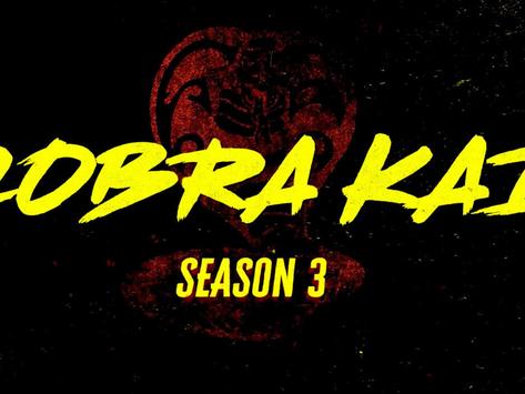 TV Show Review: Cobra Kai Season 3 Full Review (NETFLIX)