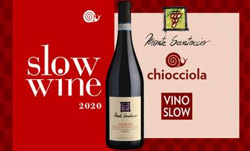 Slow Wine 2020 Cantina Premiata Vino Slow