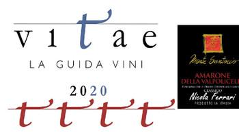 Amarone della Valpolicella 2013, guida AIS 4 viti 2019